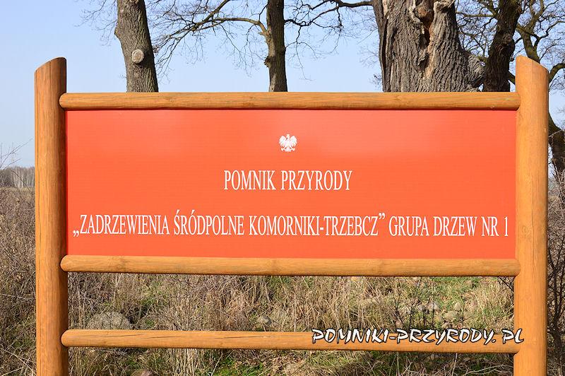 tablica przy grupie drzew nr 1