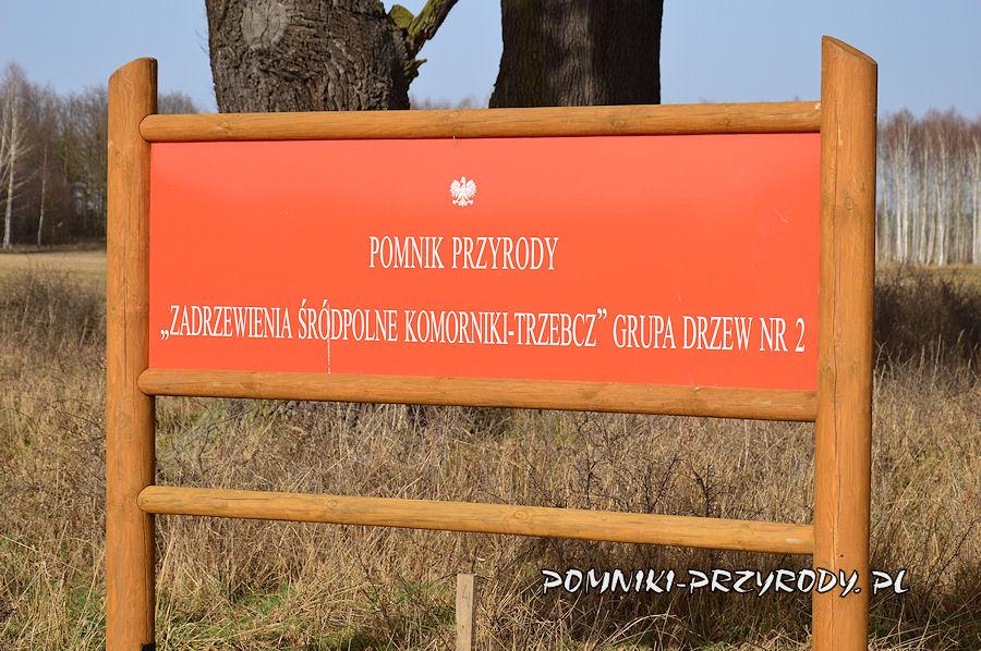 tablica przy grupie drzew nr 2