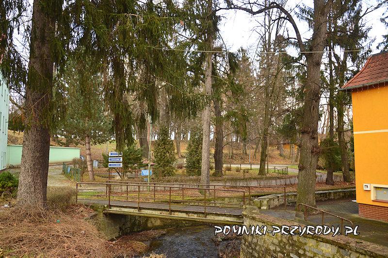 Ślęza i park w Przerzeczynie-Zdroju