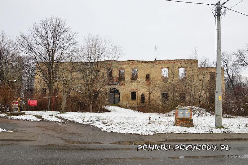 ruiny pałacu w Prusach - widok od strony drogi