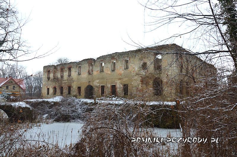 ruiny pałacu w Prusach - widok od strony parku