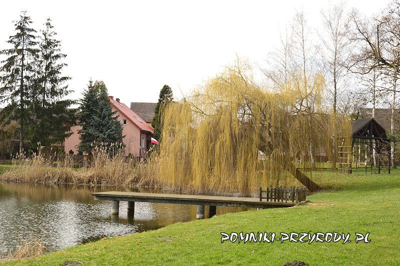 Godzieszowa - pomost na stawie parkowym