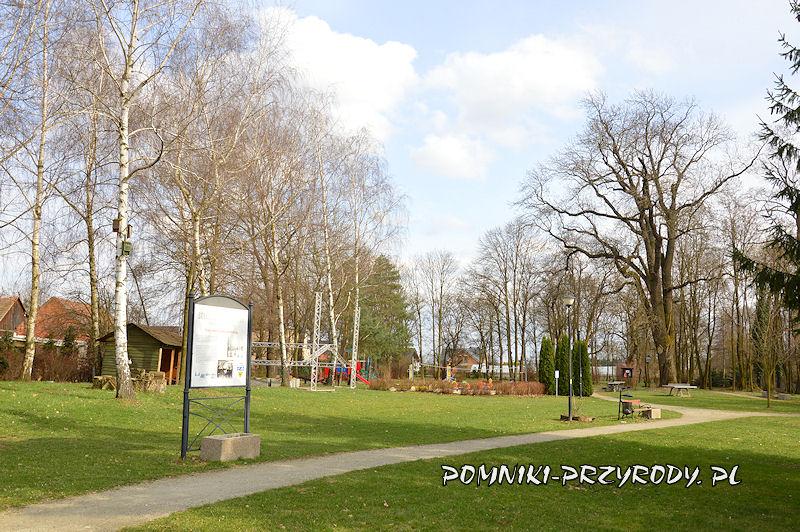 fragment parku w Godzieszowej