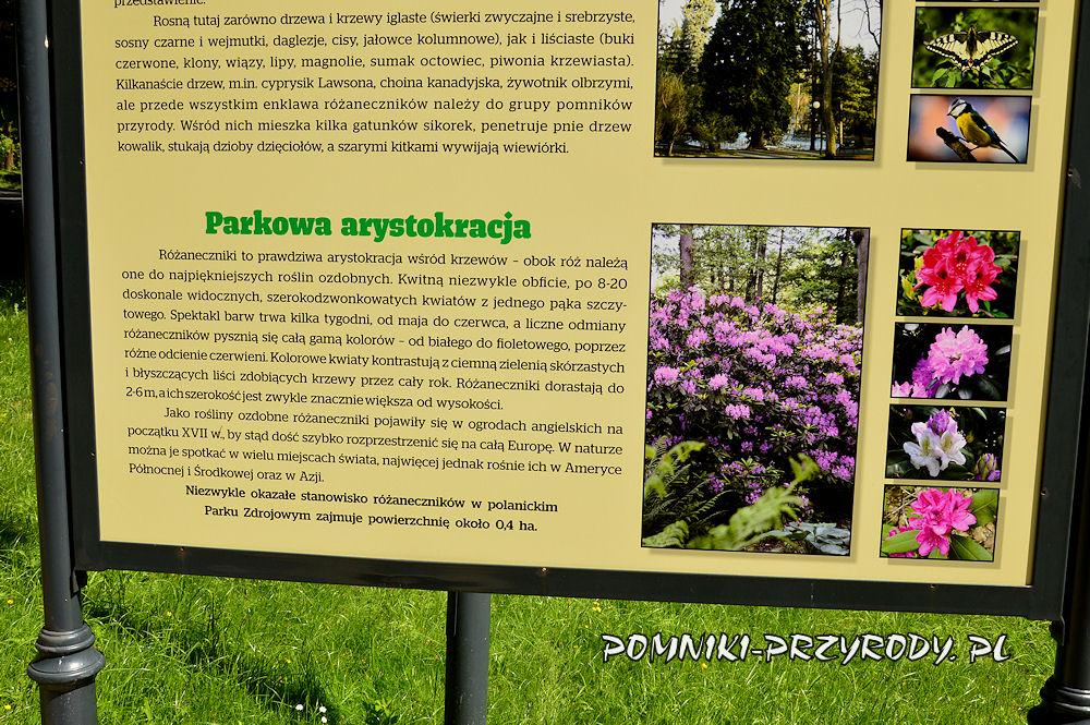 fragment tablicy w Parku Zdrojowym w Polanicy-Zdroju