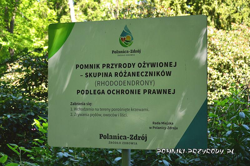tablica w Parku Różaneczników