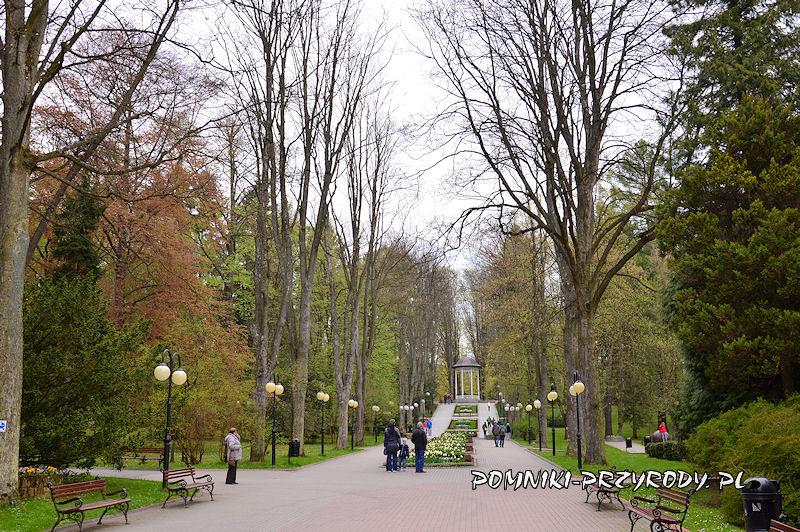 aleja w Parku Zdrojowym w Polanicy-Zdroju